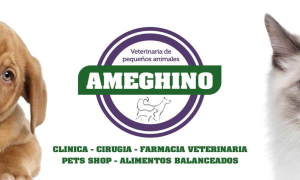 Veterinaria Ameghino sólo en la Guía Esquel