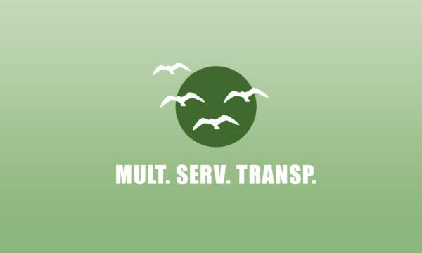 MULT SERV TRANSP en La Guia Esquel