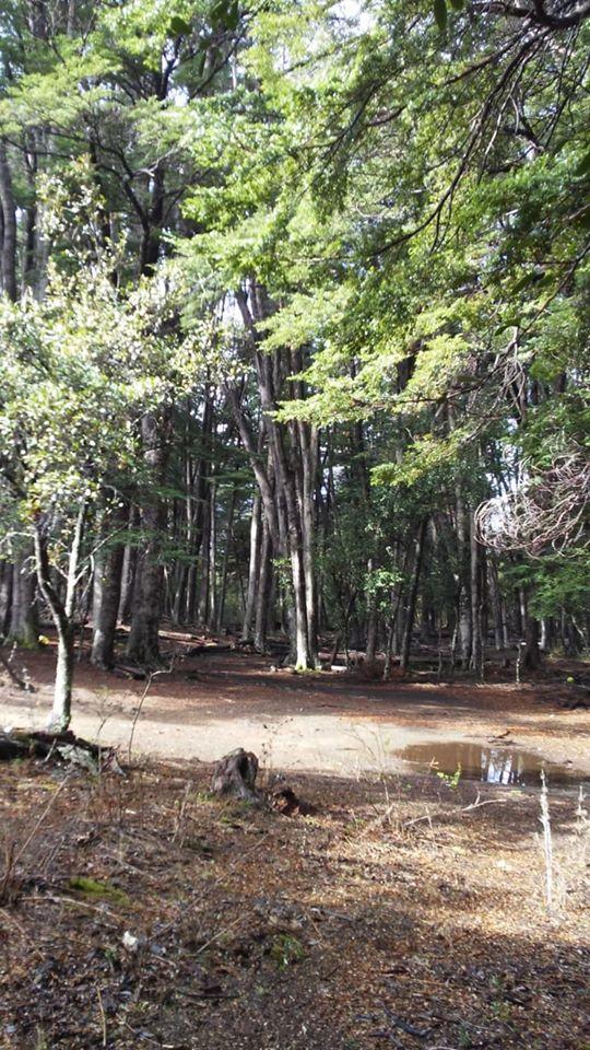 Bahia Solis Camping Esquel