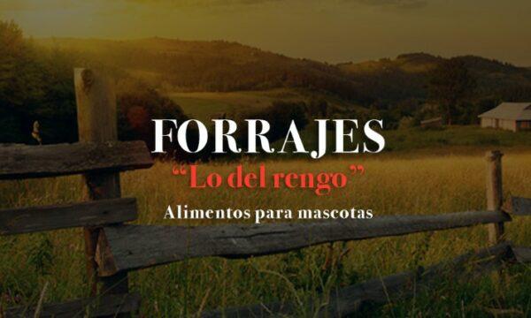 forrajes_lo_del_rengo_en_La_Guia_esquel